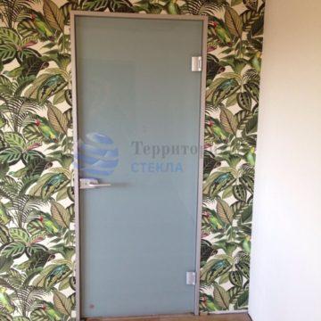 Дверь в алюминиевой коробке из триплекса